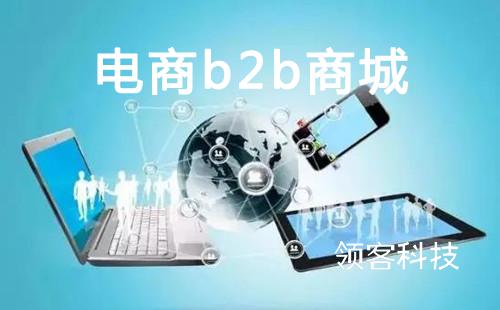 电商开发b2b商城有必要吗?